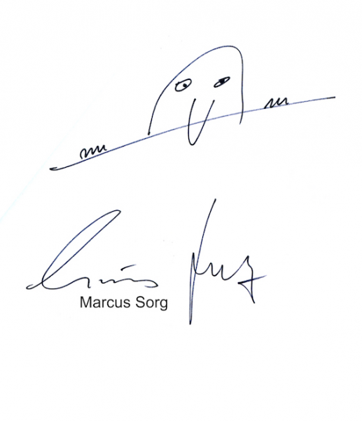 Datei:Marcus Sorg.png