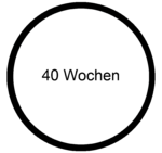 Baby MOOC - 40 Wochen.png